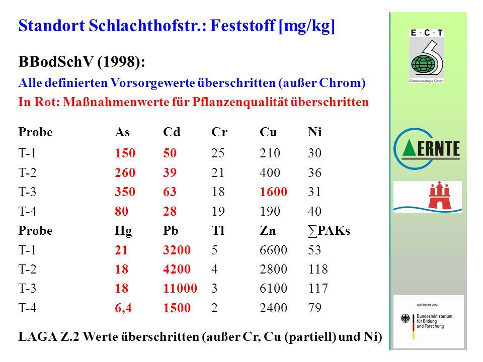 Standort Schlachthofstr.: Feststoff [mg/kg]